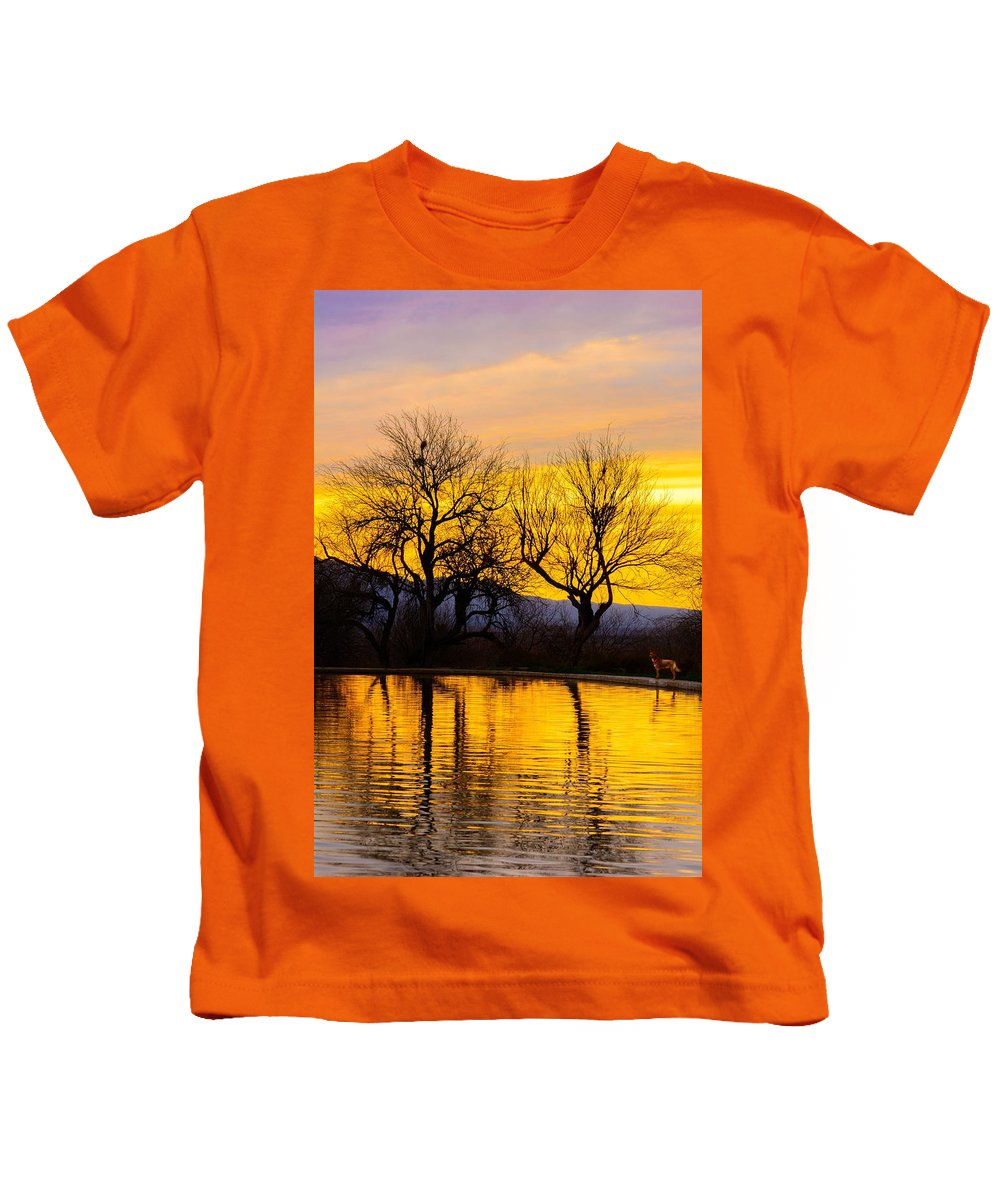 Reflection Kids T-Shirt featuring the photograph Reflective Pool At Eden by Daniel Dean