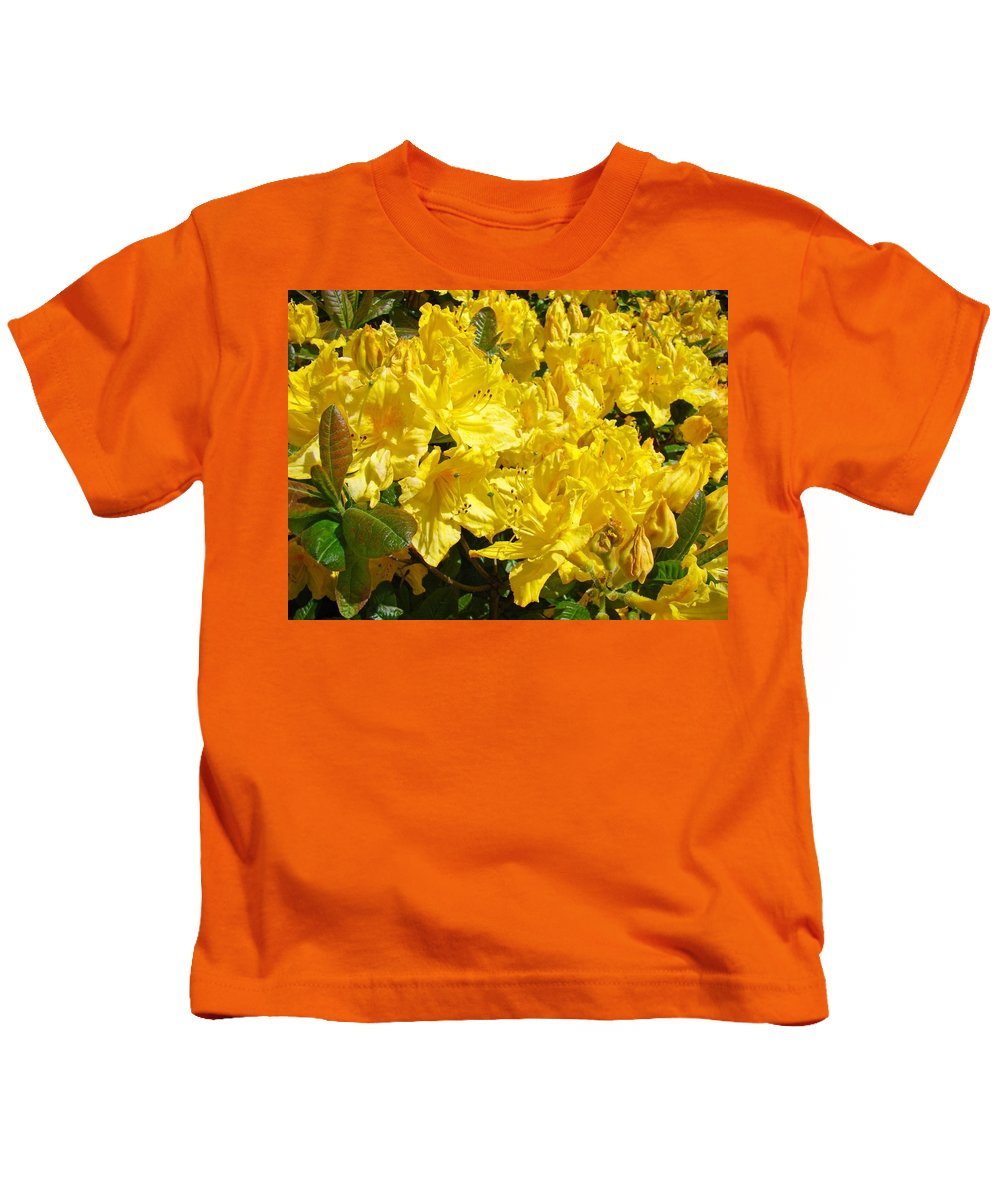Rhodie Kids T-Shirt featuring the photograph Rhodies Yellow Rhododendrons Art Prints Baslee Troutman by Baslee Troutman