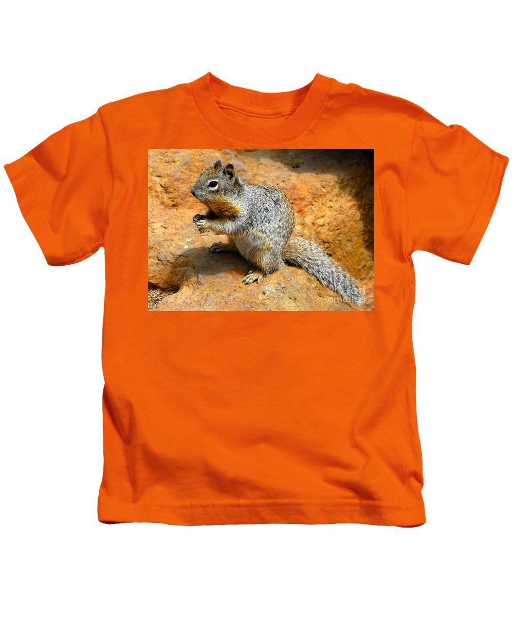 Rock Squirrel Kids T-Shirt featuring the photograph Rock Squirrel by David Lee Thompson