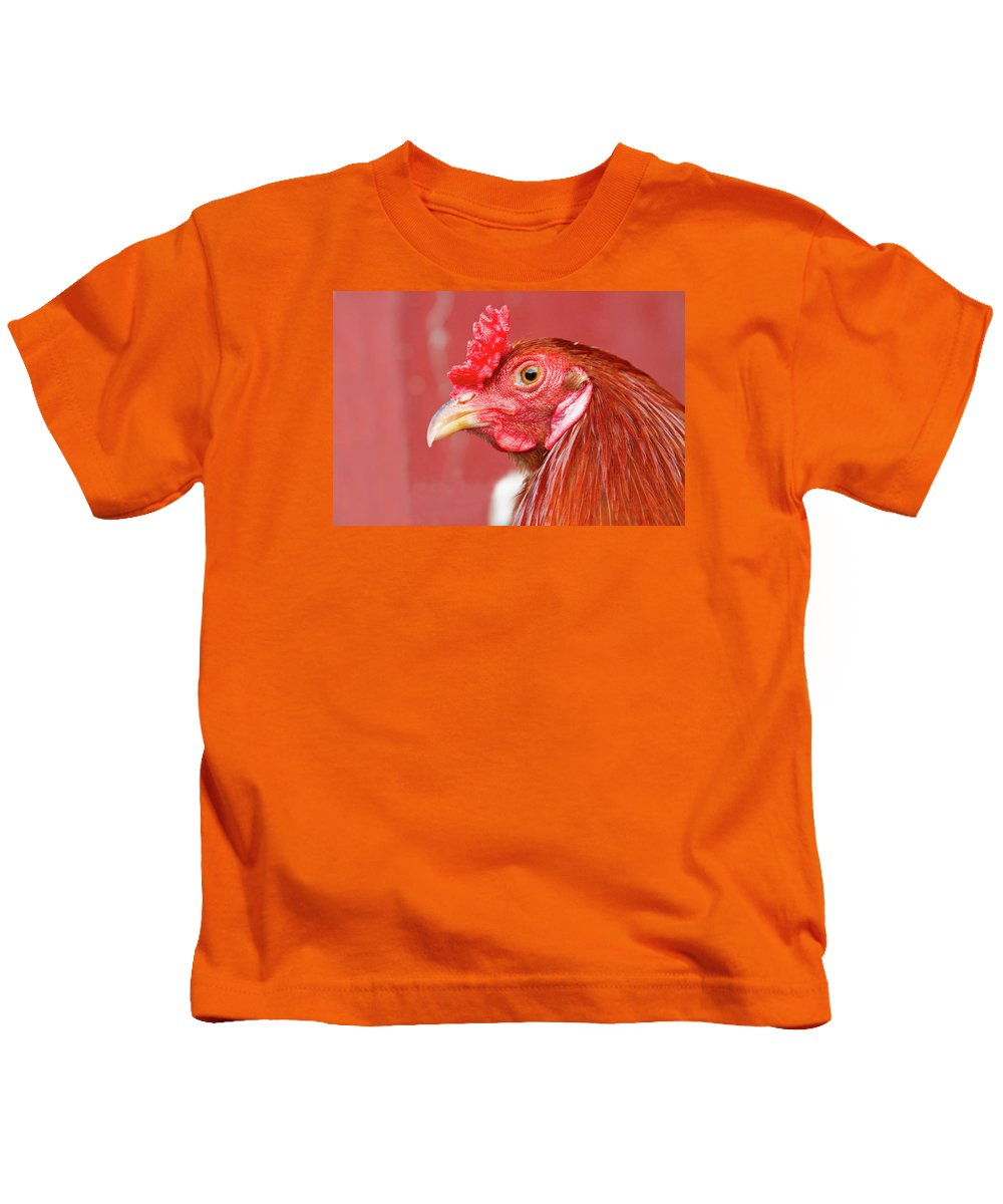 Rooster Kids T-Shirt featuring the photograph Rooster Close-up On A Reddish Background by James BO Insogna