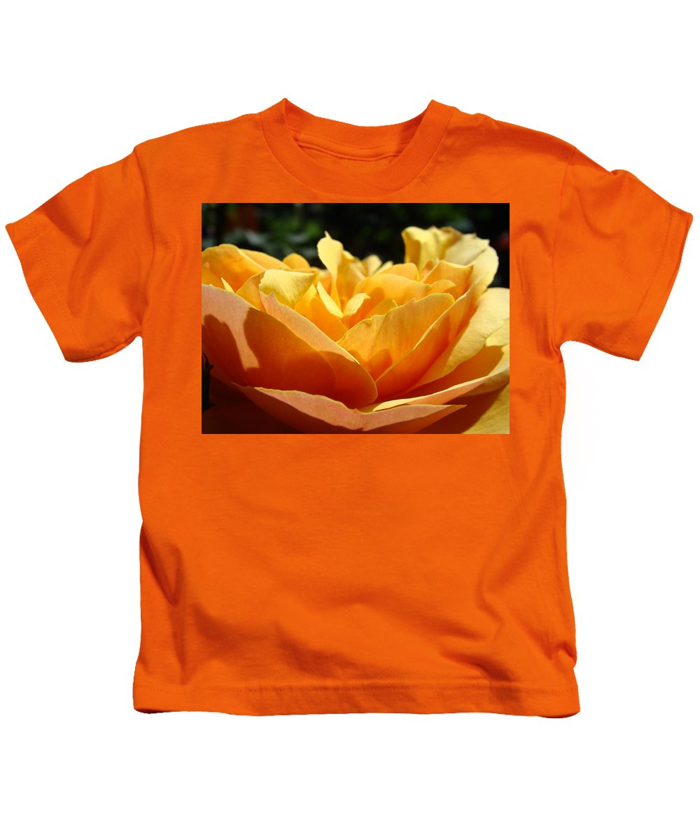 Rose Kids T-Shirt featuring the photograph Rose Sunlit Orange Rose Garden 7 Rose Giclee Art Prints Baslee Troutman by Baslee Troutman