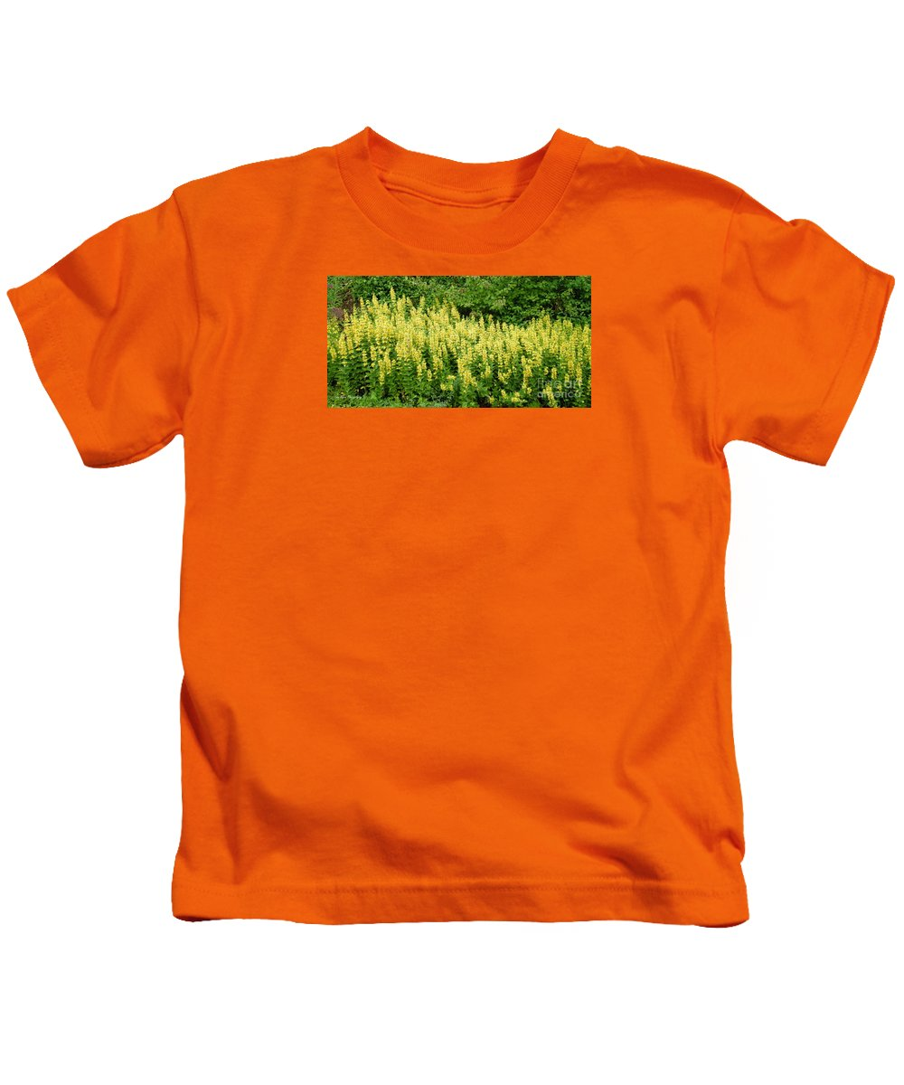Flowers Kids T-Shirt featuring the photograph Row Of Yellow Flowers by Mikhael van Aken