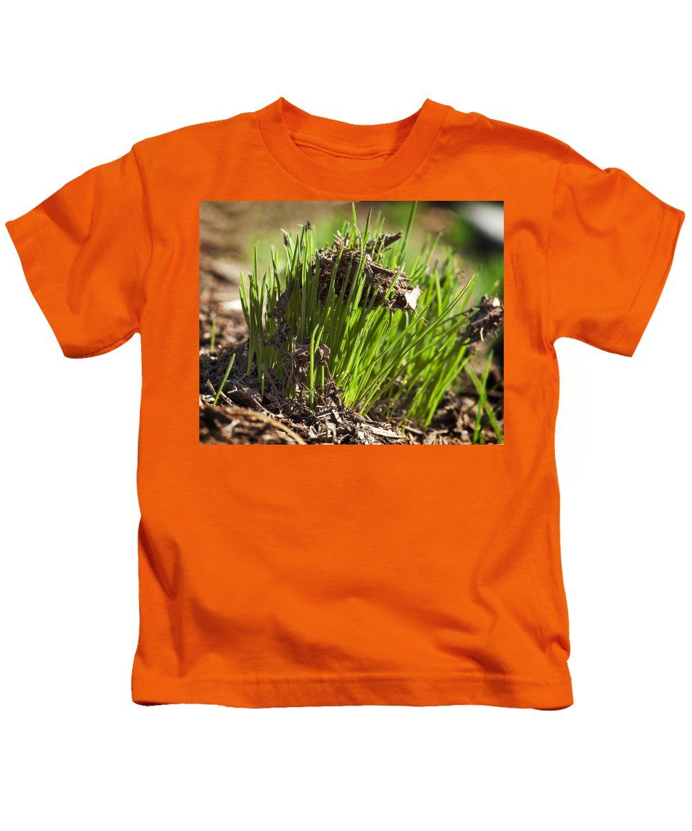 Grass Kids T-Shirt featuring the photograph Seedlings by Kelley King