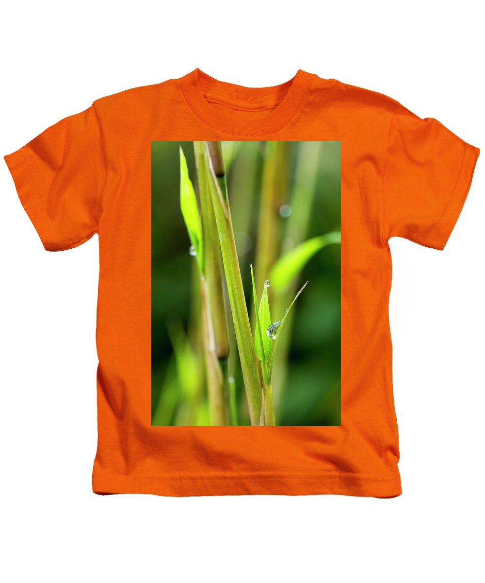 Bamboo Kids T-Shirt featuring the photograph Spring Droplets by Photopoint Art