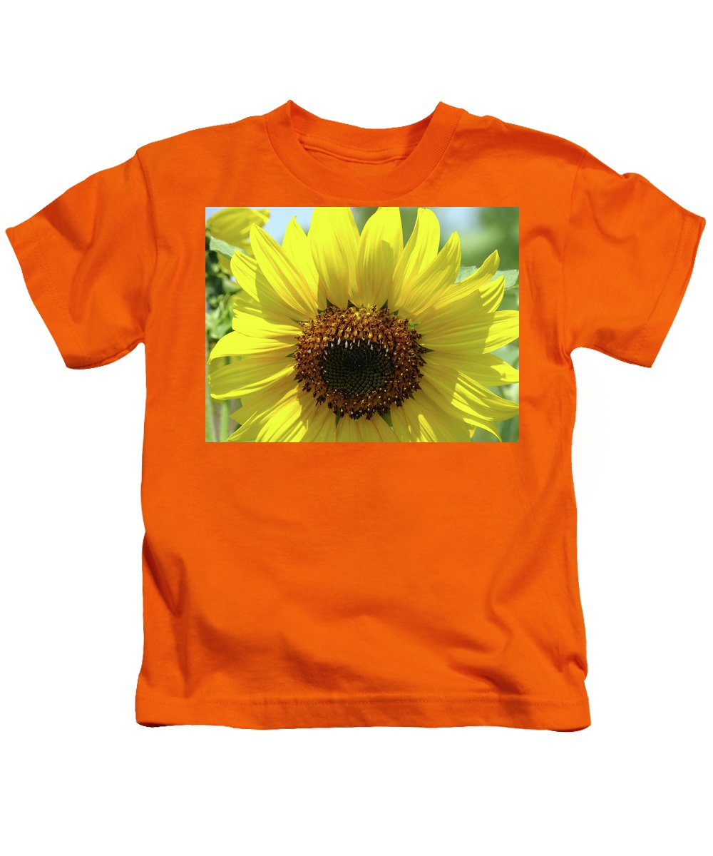 Sunflower Kids T-Shirt featuring the photograph Sun Flower Glow Art Print Summer Sunflowers Baslee Troutman by Baslee Troutman