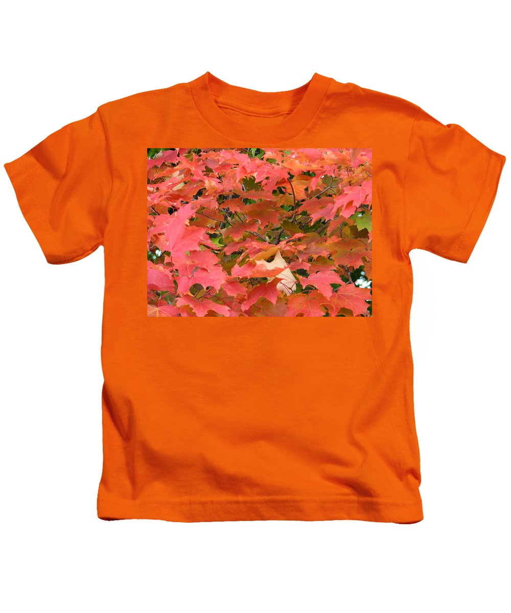Leaves Kids T-Shirt featuring the photograph Sunburst by Kelly Mezzapelle