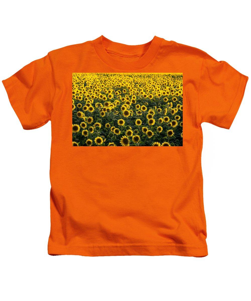 Sunflower Kids T-Shirt featuring the digital art Sunflower by Dorothy Binder