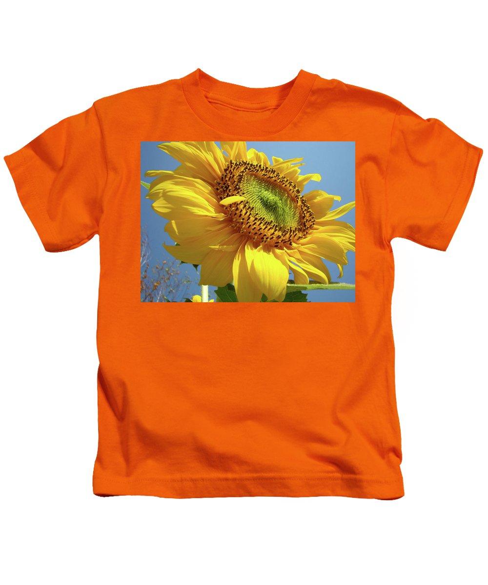 Sunflower Kids T-Shirt featuring the photograph Sunflower Sunlit Sun Flowers 6 Blue Sky Giclee Art Prints Baslee Troutman by Baslee Troutman