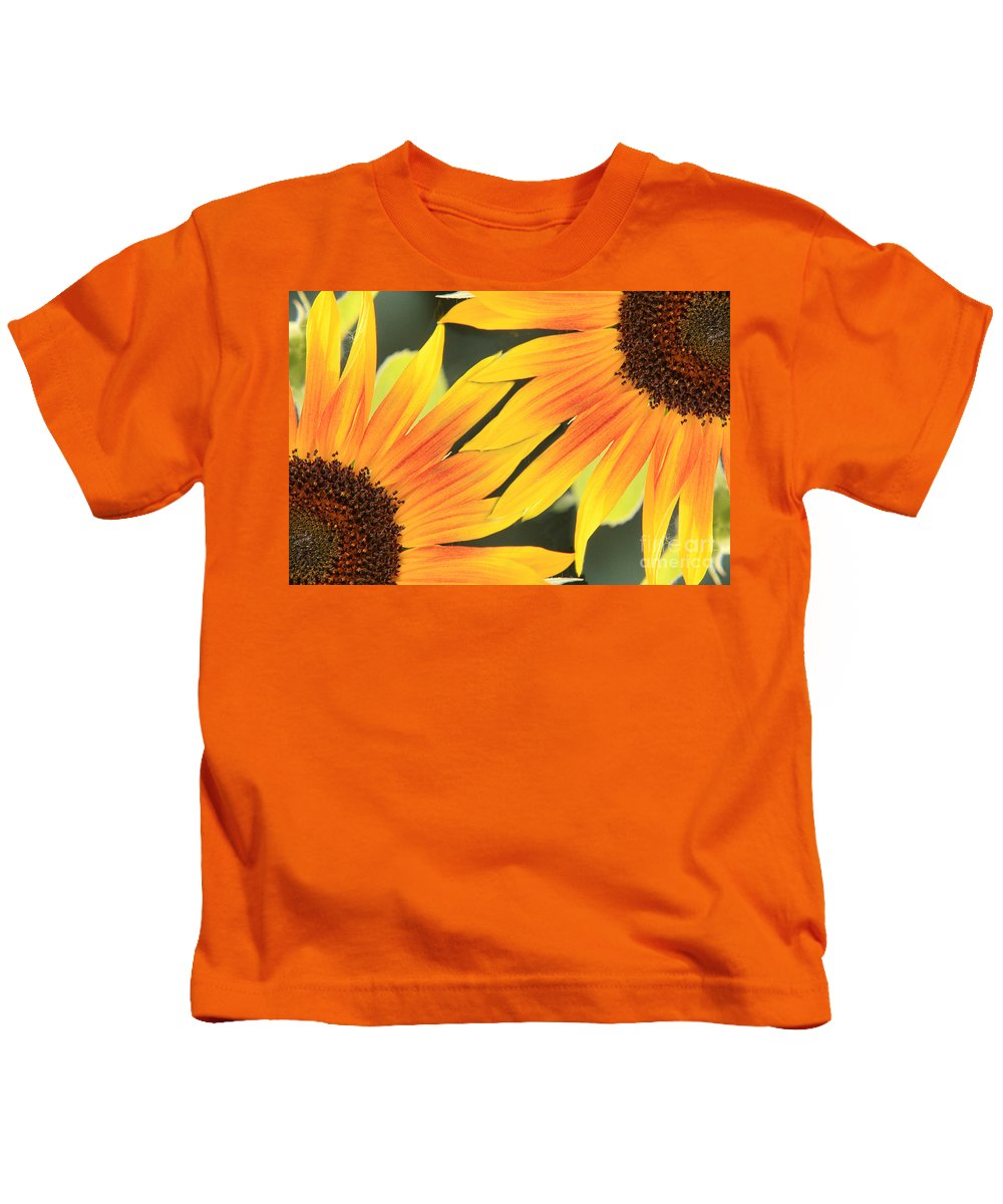 Sunflowers Kids T-Shirt featuring the photograph Sunflowers Corners by James BO Insogna