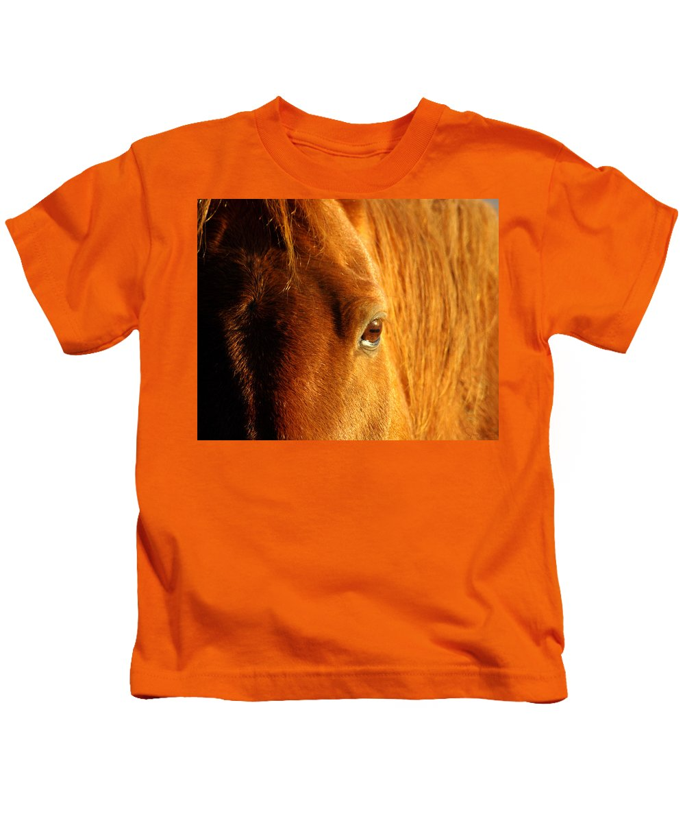 Jenny Gandert Kids T-Shirt featuring the photograph Sunlight Eyes by Jenny Gandert
