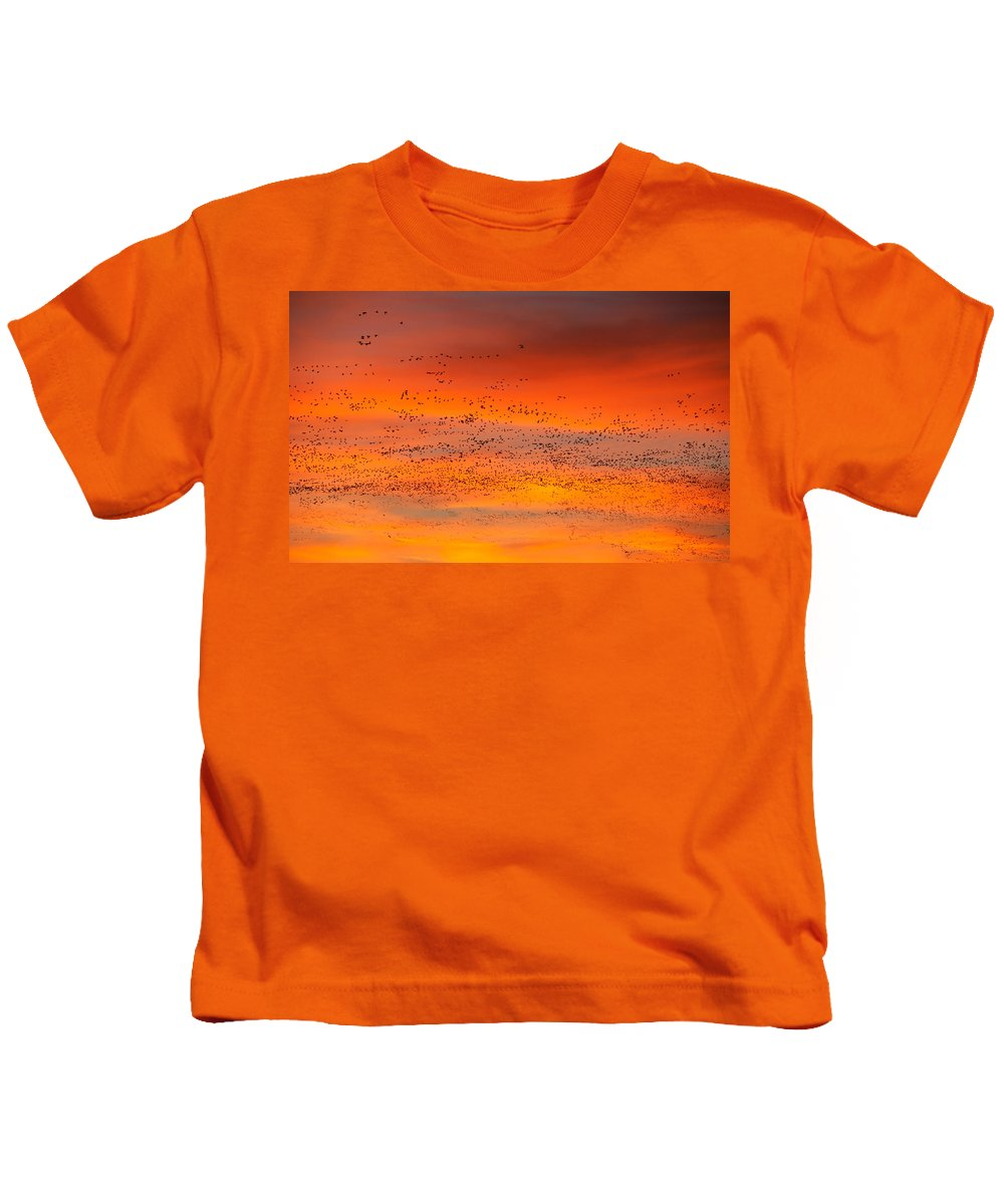 Migration Kids T-Shirt featuring the photograph Sunrise Migration by Randall Ingalls