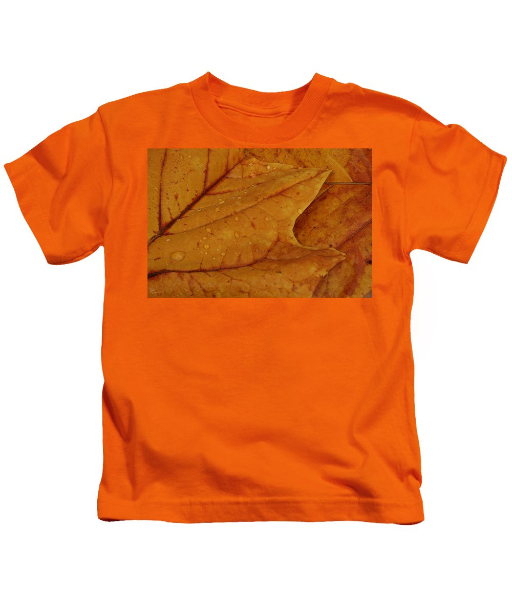 Leaves Kids T-Shirt featuring the photograph The Golden Time by Lyle Hatch