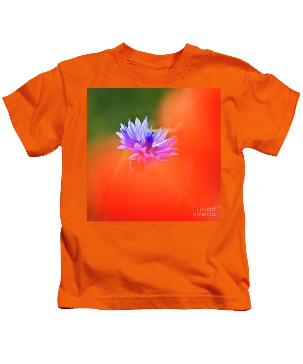 Cornflower Kids T-Shirt featuring the photograph Tucked Away 2 by Heiko Koehrer-Wagner