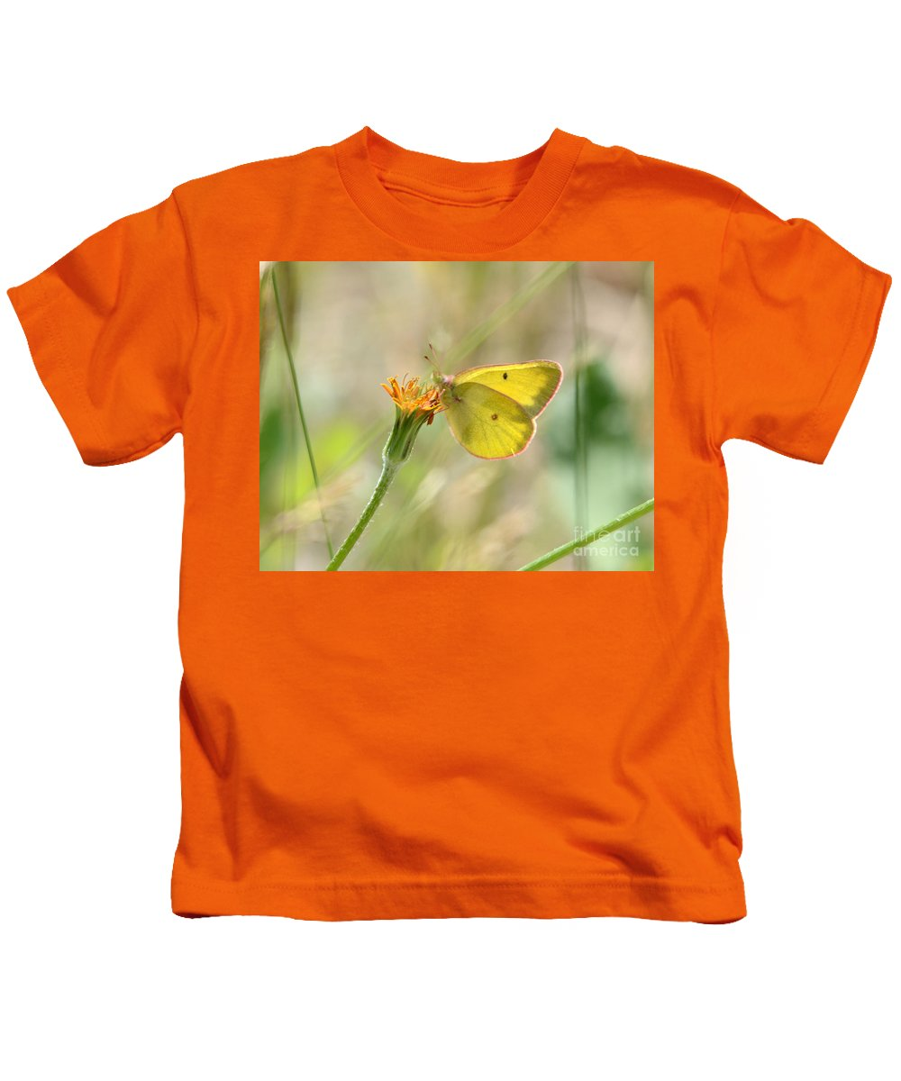 Western Kids T-Shirt featuring the photograph Wester Sulfur Butterfly by Brad Christensen