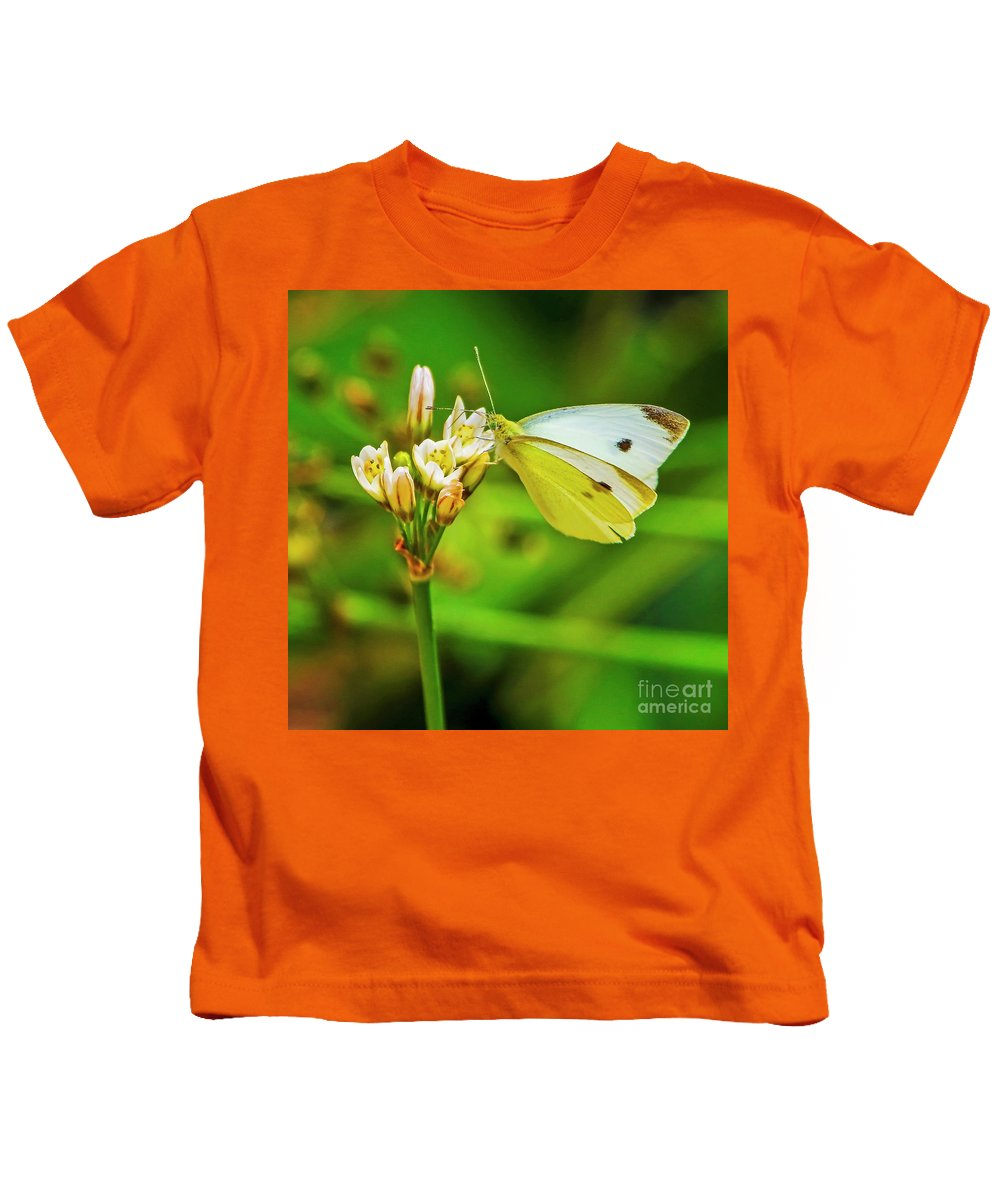 White Butterfly Kids T-Shirt featuring the photograph White Butterfly by Edita De Lima