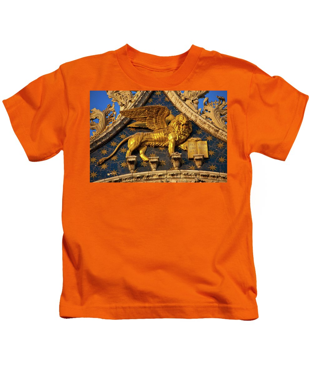 Winged Lion Kids T-Shirt featuring the photograph Winged Lion by Harry Spitz