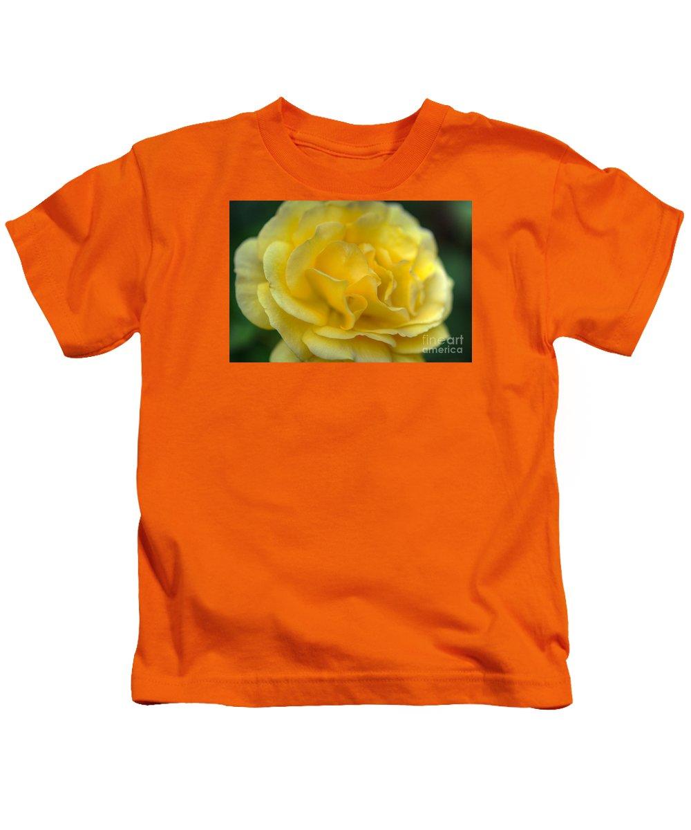 Garden Flowers Kids T-Shirt featuring the photograph Yellow Golden Single Flower by David Zanzinger