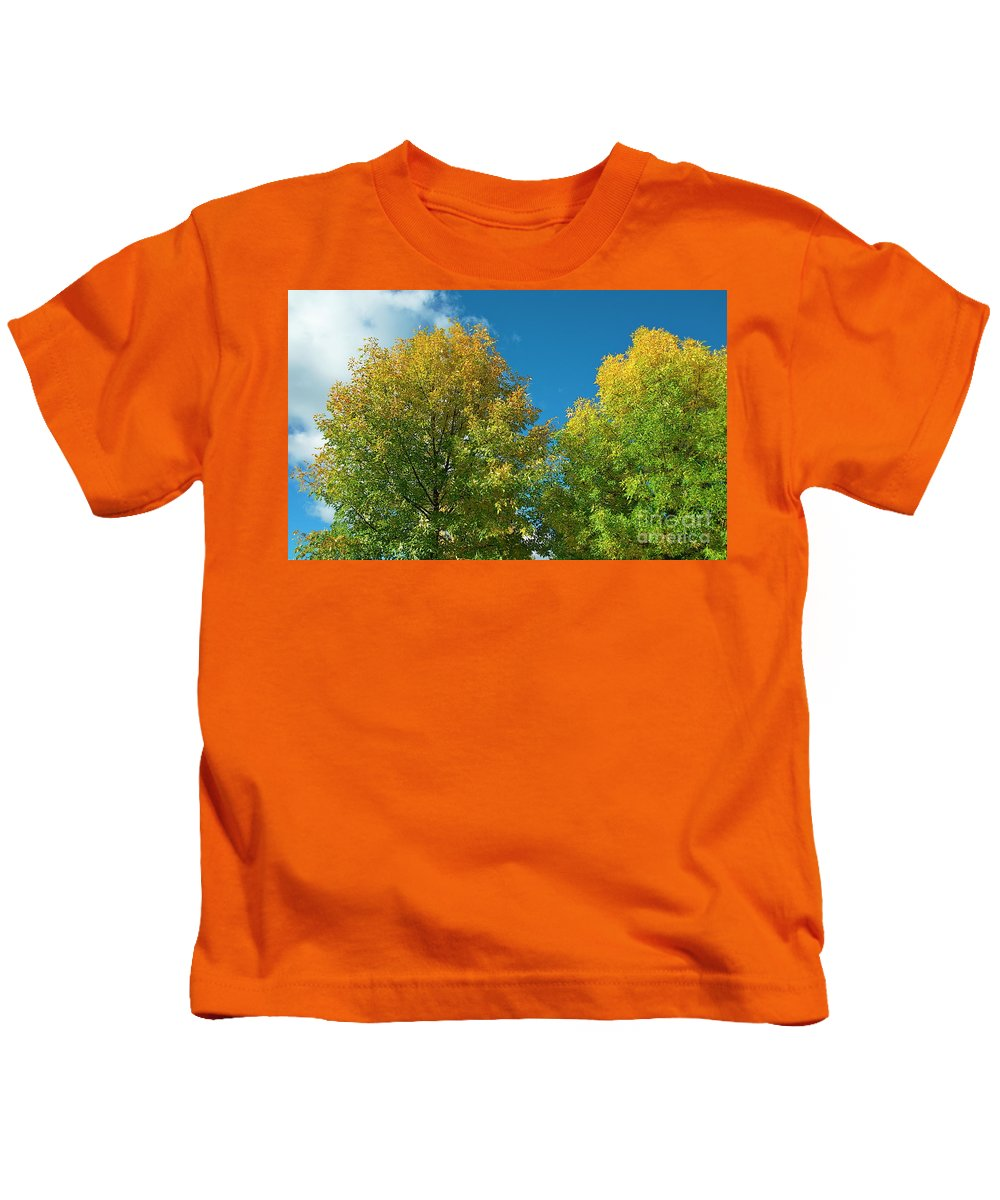 Tree Kids T-Shirt featuring the photograph Fraxinus Excelsior by Esko Lindell