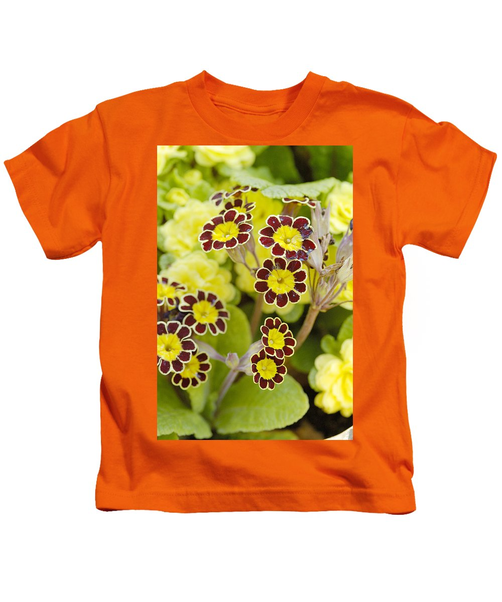 Flower Kids T-Shirt featuring the photograph Primula Gold Lace by Victor Lord Denovan