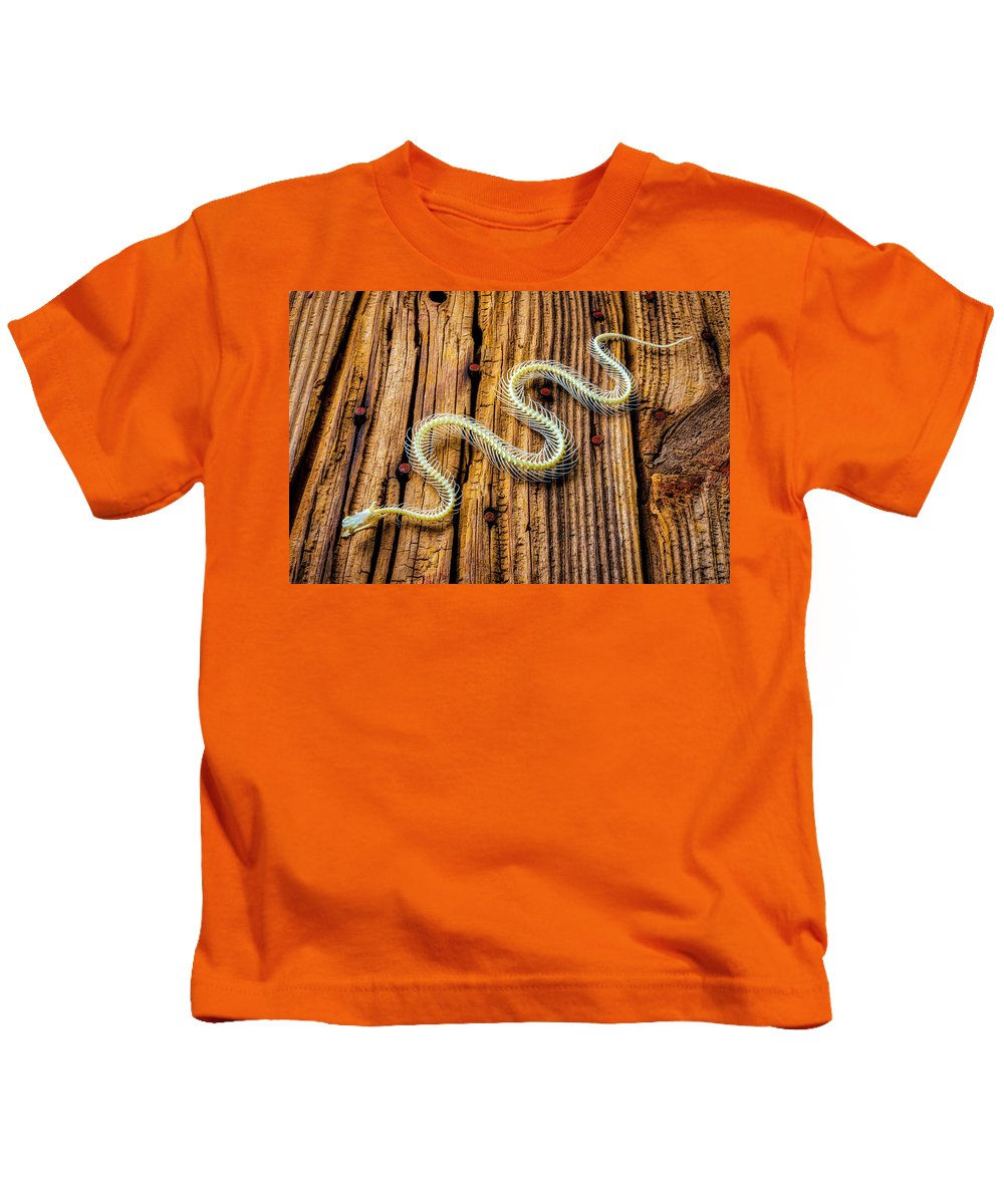 Snake Kids T-Shirt featuring the photograph Snake Skeleton On Wooden Boards by Garry Gay