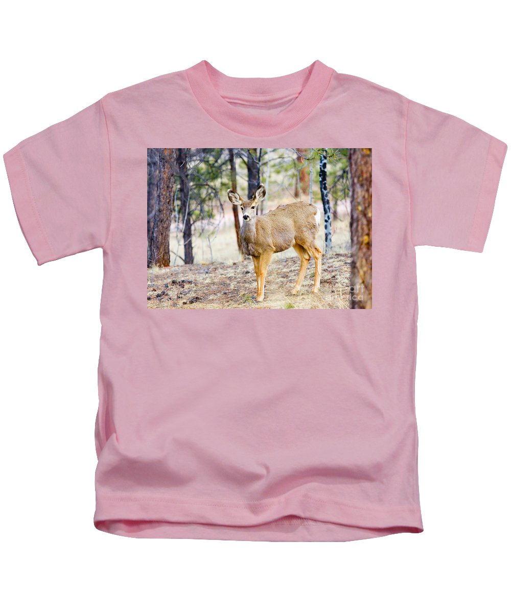 Mule Deer Kids T-Shirt featuring the photograph Mule Deer Does by Steve Krull