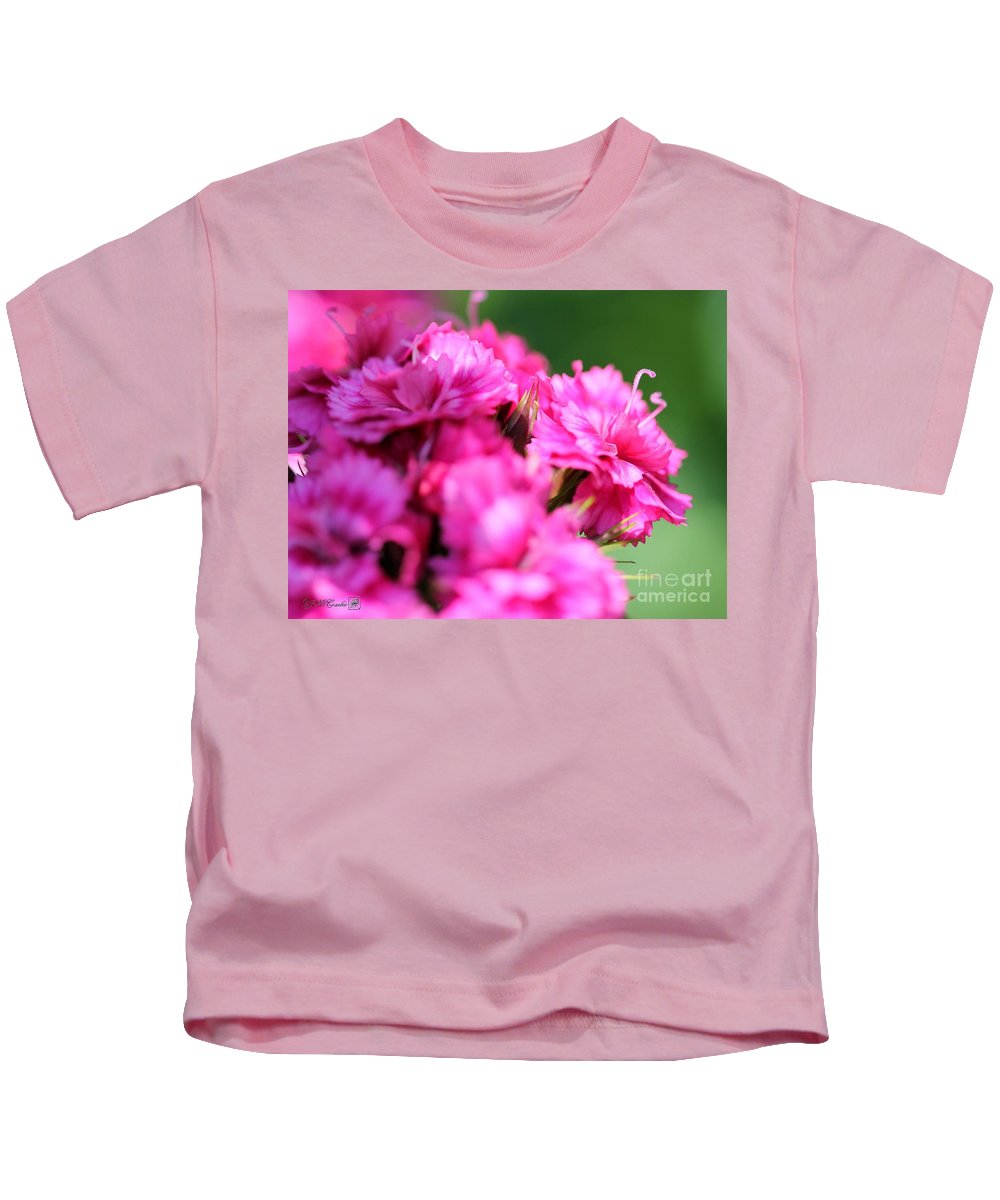 Mccombie Kids T-Shirt featuring the photograph Sweet William From The Super Duplex Bluepoint Mix by J McCombie
