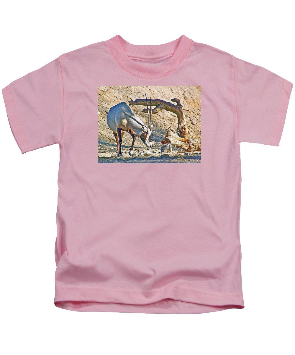 Arabian Oryx In Living Desert In Palm Desert Kids T-Shirt featuring the photograph Arabian Oryx In Living Desert In Palm Desert-california by Ruth Hager