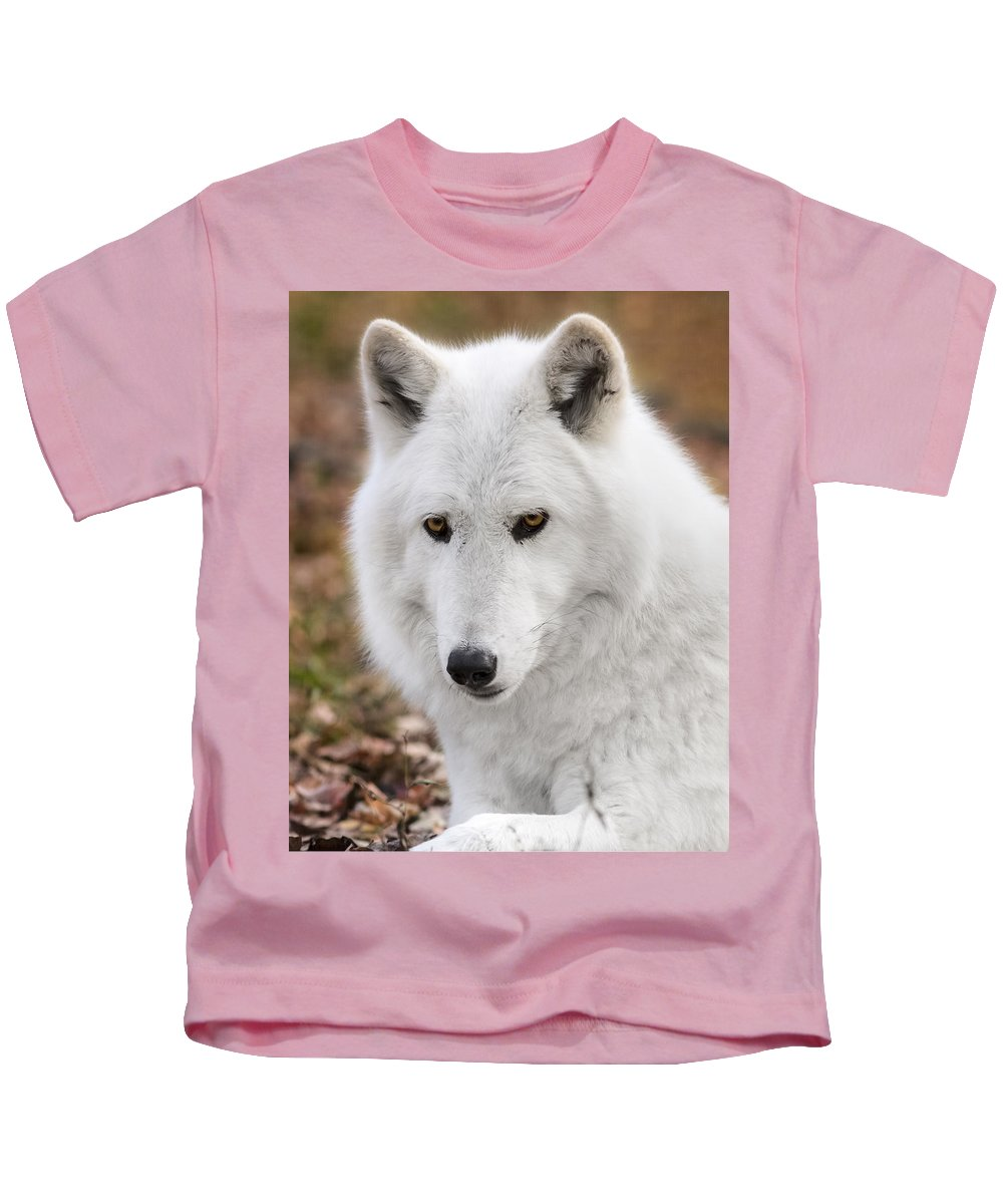 British Columbian Wolfs Kids T-Shirt featuring the photograph Arctic Wolf by Eduard Moldoveanu