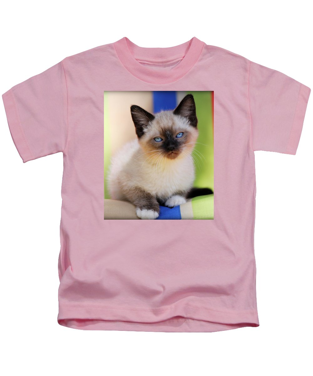 Kitten Kids T-Shirt featuring the photograph Baby Blues by Melanie Lankford Photography