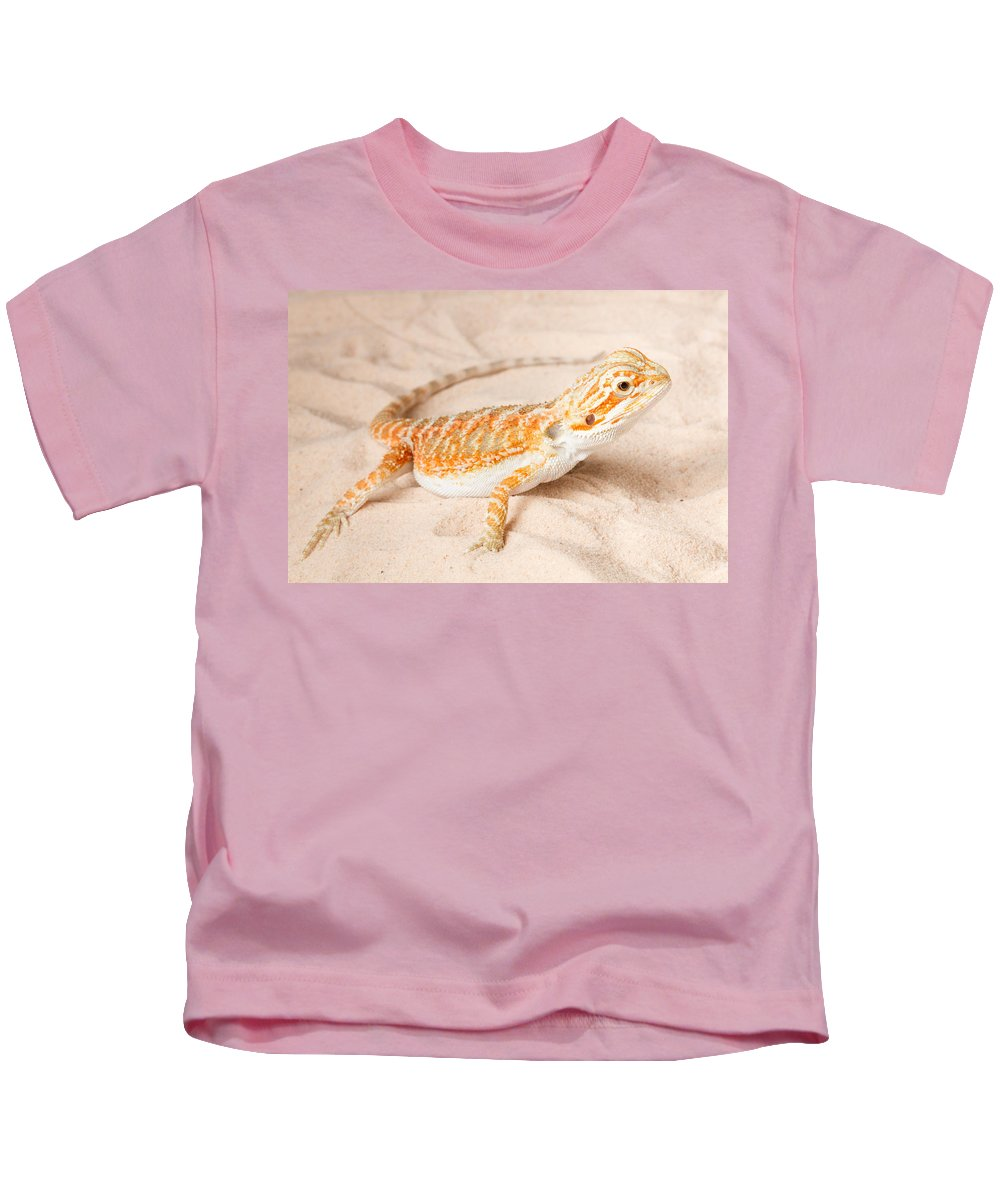 Animal Kids T-Shirt featuring the photograph Bearded Dragon Pogona Sp. On Sand by David Kenny