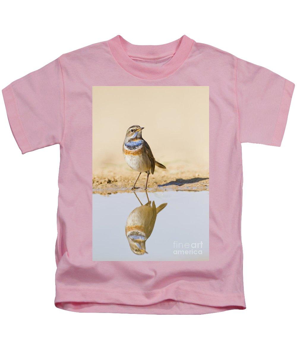 Bluethroat Kids T-Shirt featuring the photograph Bluethroat Luscinia Svecica by Eyal Bartov