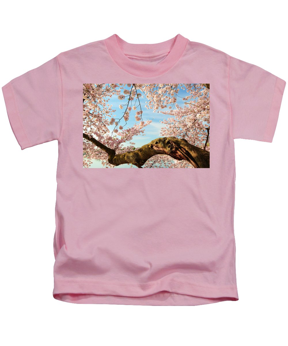 Architectural Kids T-Shirt featuring the photograph Cherry Blossoms 2013 - 089 by Metro DC Photography