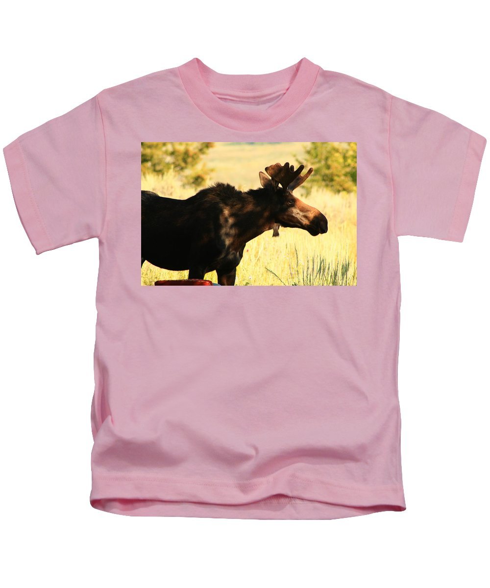 Moose Kids T-Shirt featuring the photograph Do Not Disturb by Catie Canetti