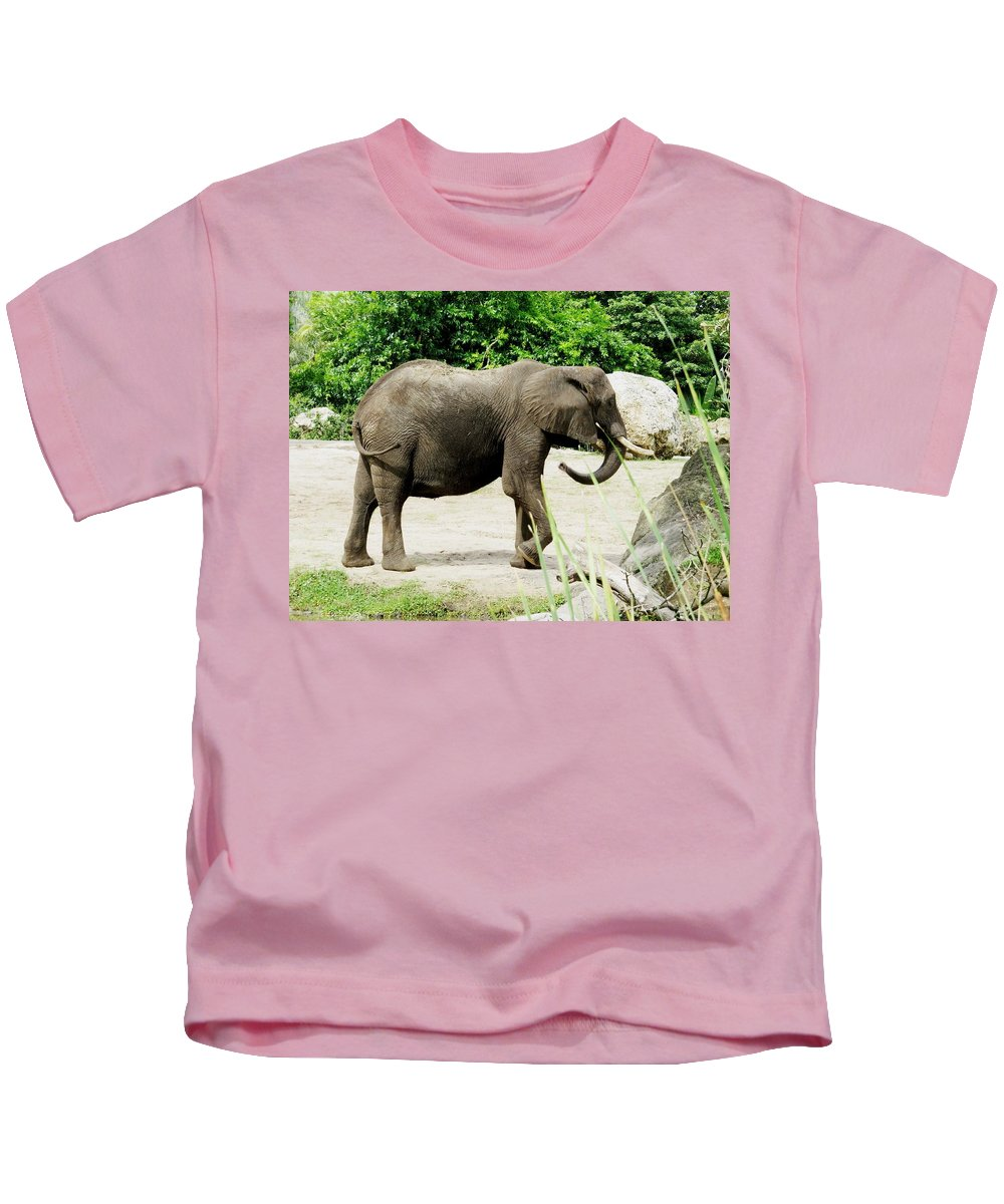 Elephant Kids T-Shirt featuring the photograph Elephant by Zina Stromberg