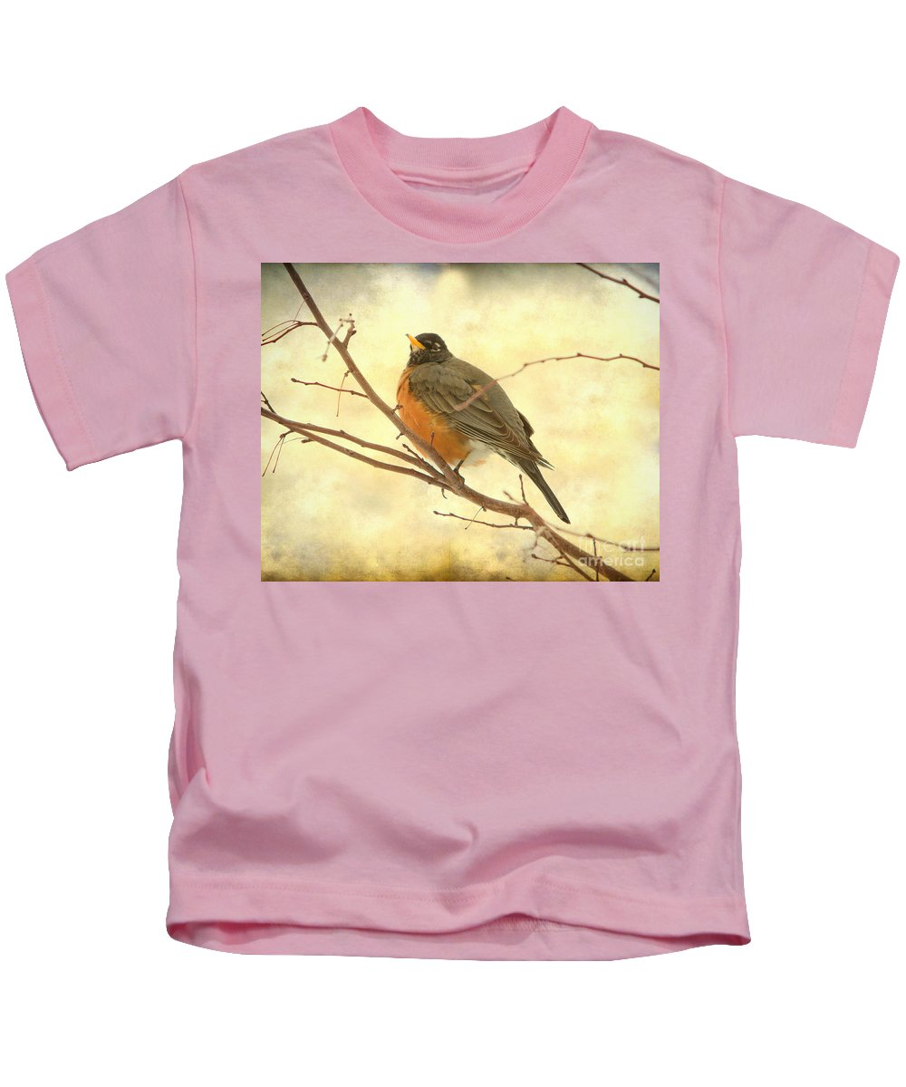 American Robin Kids T-Shirt featuring the photograph Female American Robin by James BO Insogna