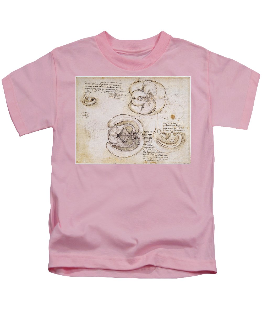 1508 Kids T-Shirt featuring the photograph Leonardo: Ventricles, C1508 by Granger