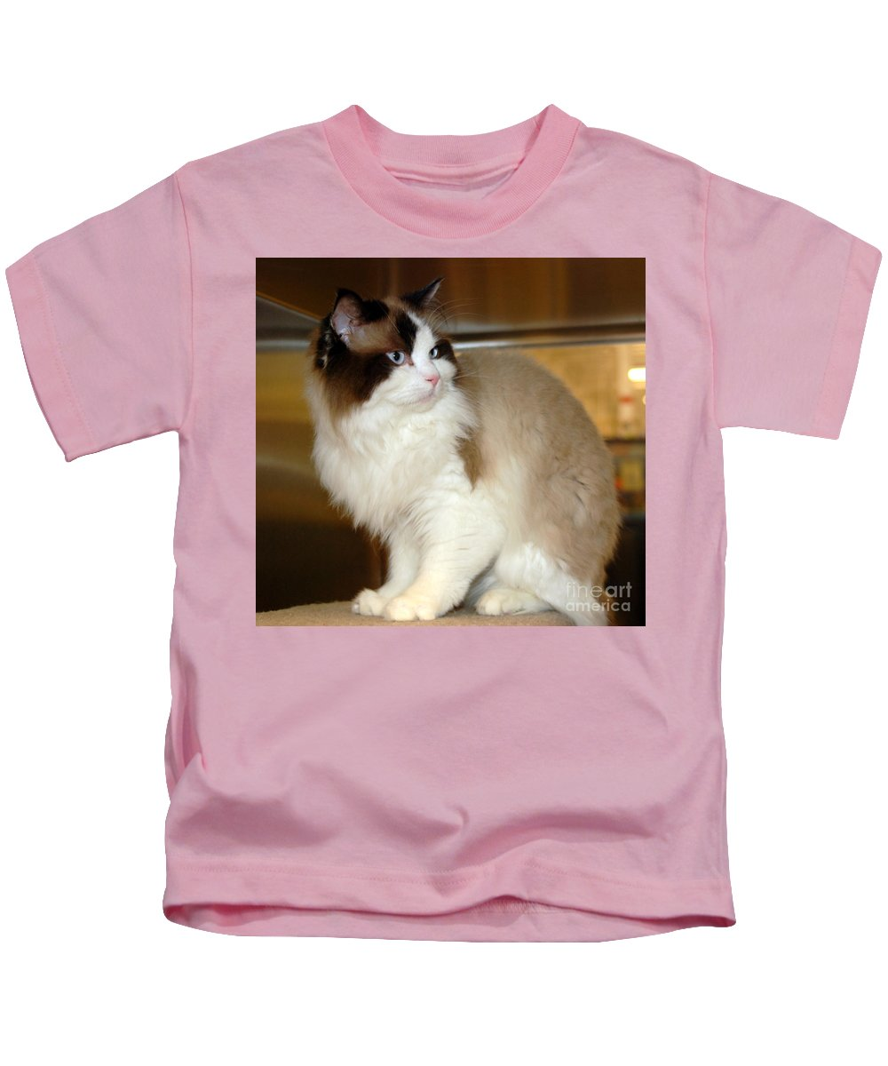 Cats Kids T-Shirt featuring the photograph Moonshine by John Greco