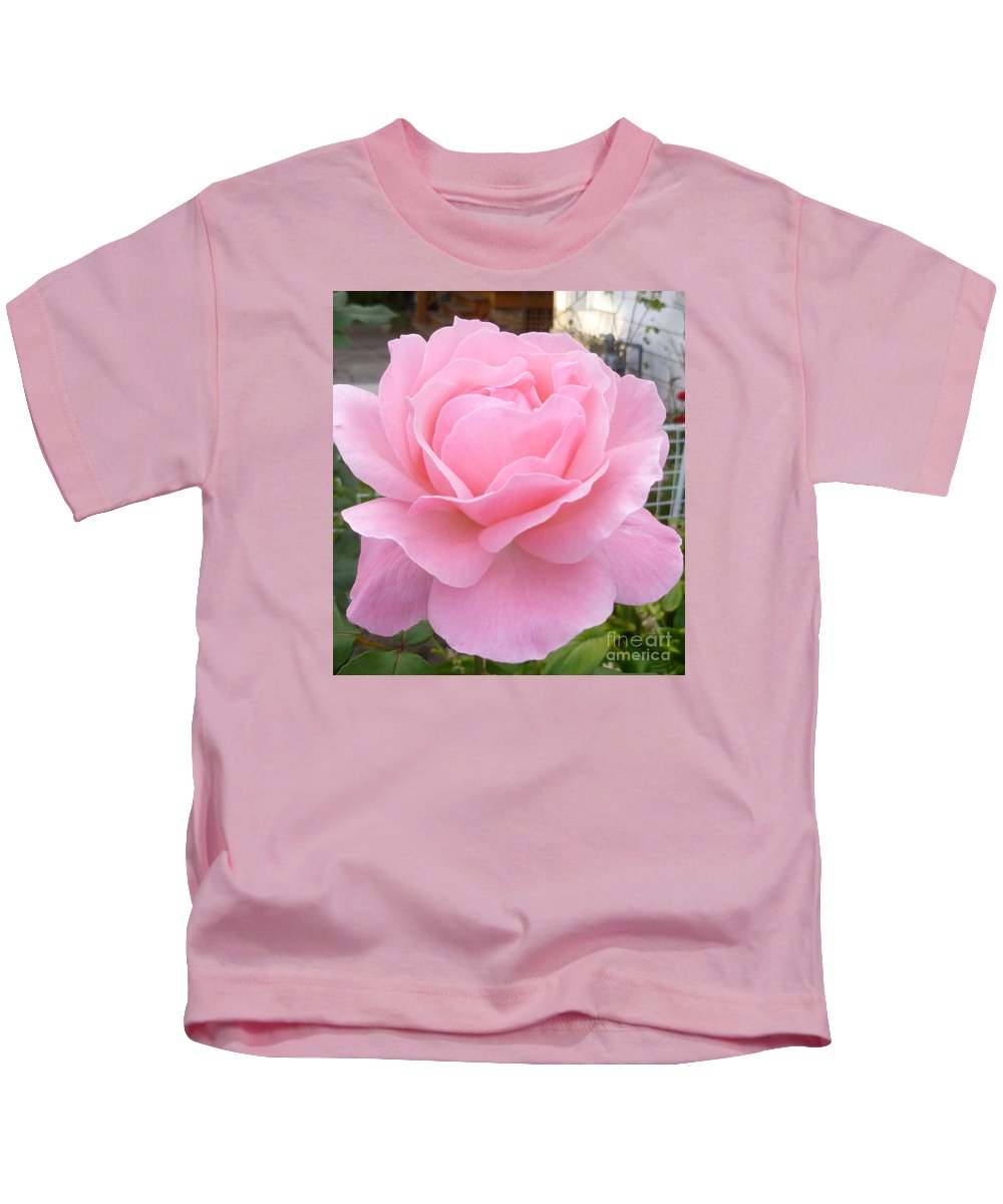 Rose Photograph Kids T-Shirt featuring the photograph Pink Lady by Lingfai Leung