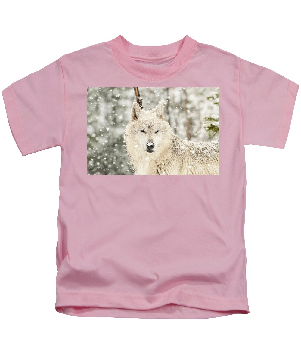 Wolf Kids T-Shirt featuring the photograph Snowy Wolf by Donna Doherty