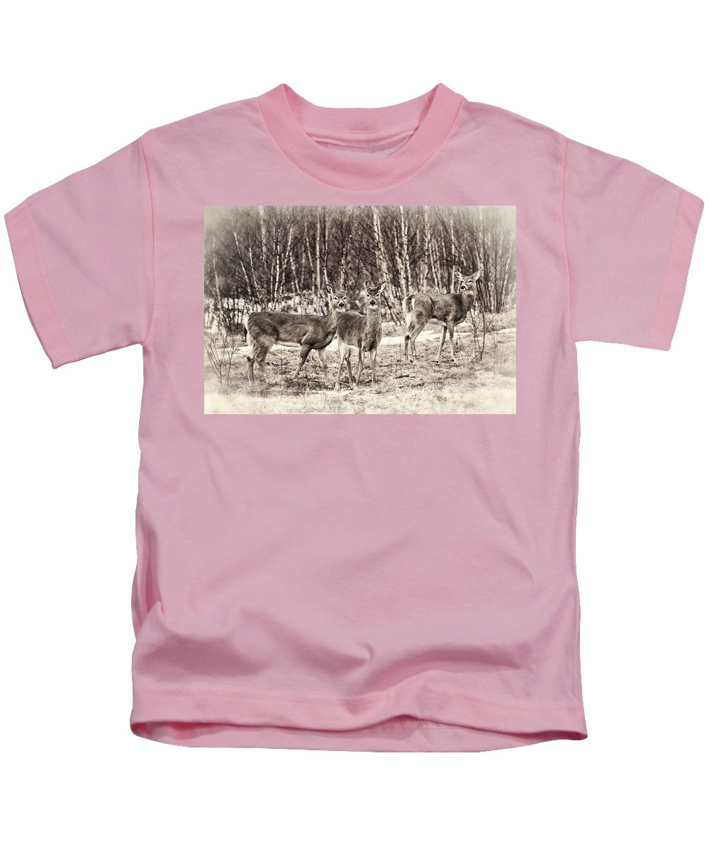 Deer Kids T-Shirt featuring the photograph Three In The Field by Susan Capuano