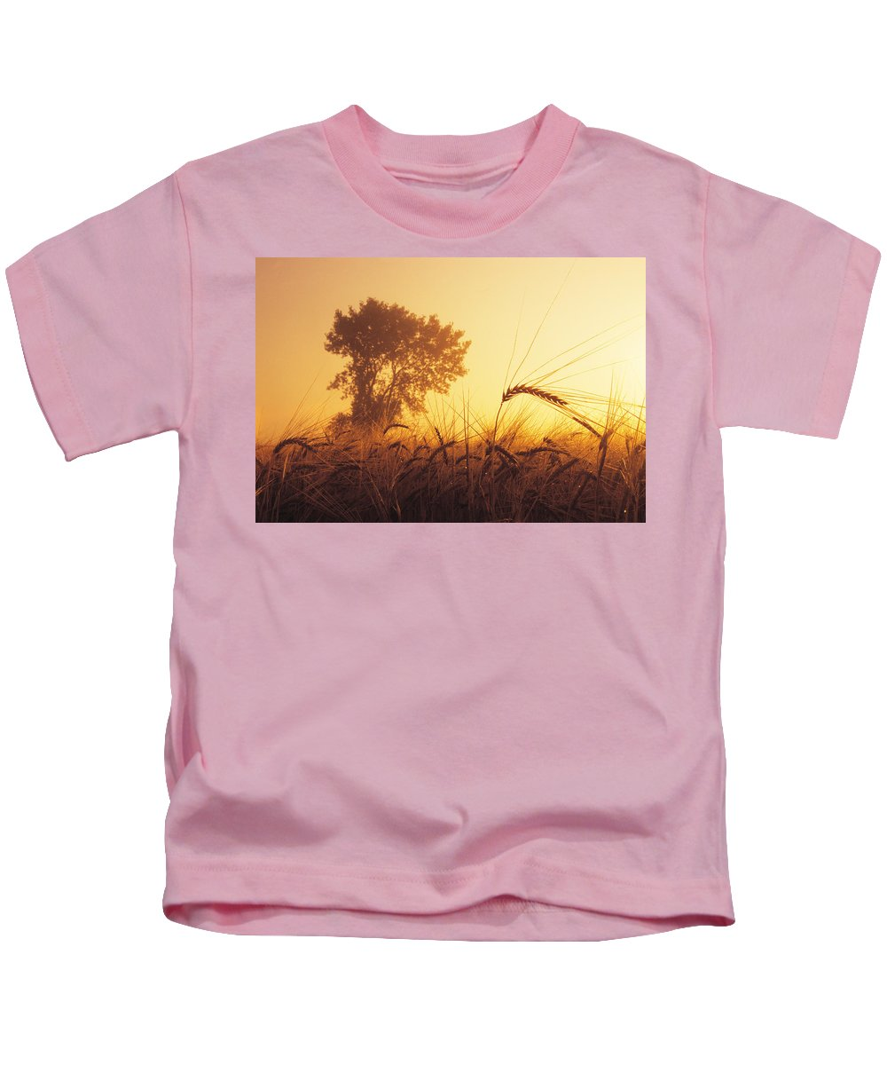 Barley Kids T-Shirt featuring the photograph Mist In A Barley Field At Sunset by Dave Reede