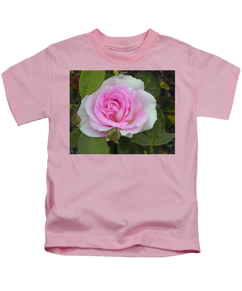 Soft Pink Rose Kids T-Shirt featuring the photograph Rosy by Tikvah's Hope