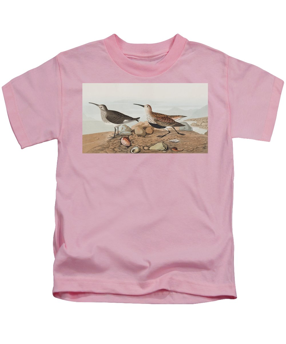 Sandpiper Kids T-Shirt featuring the painting Red Backed Sandpiper by John James Audubon