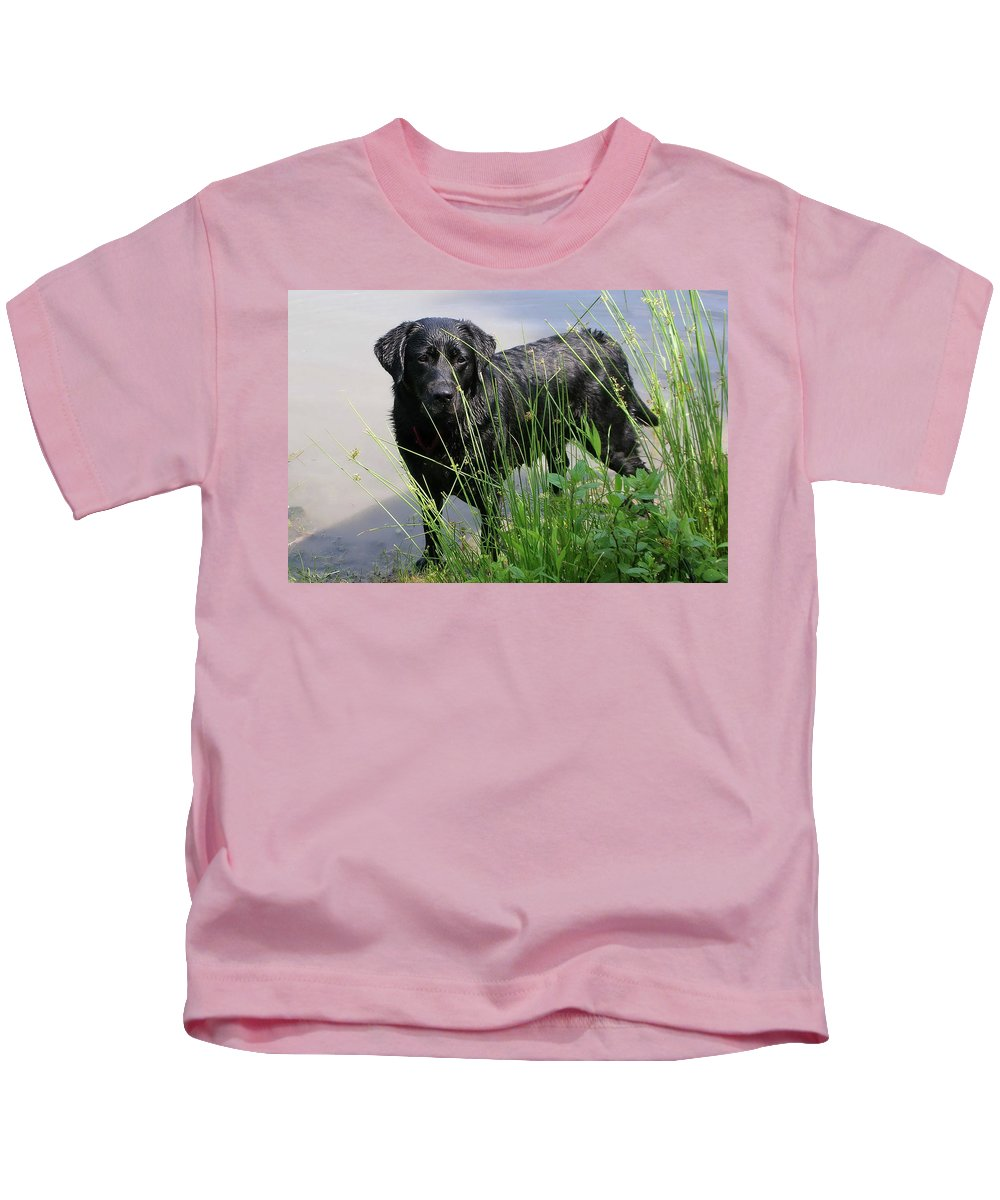 Dog Kids T-Shirt featuring the photograph Chicago 0121 by Guy Whiteley
