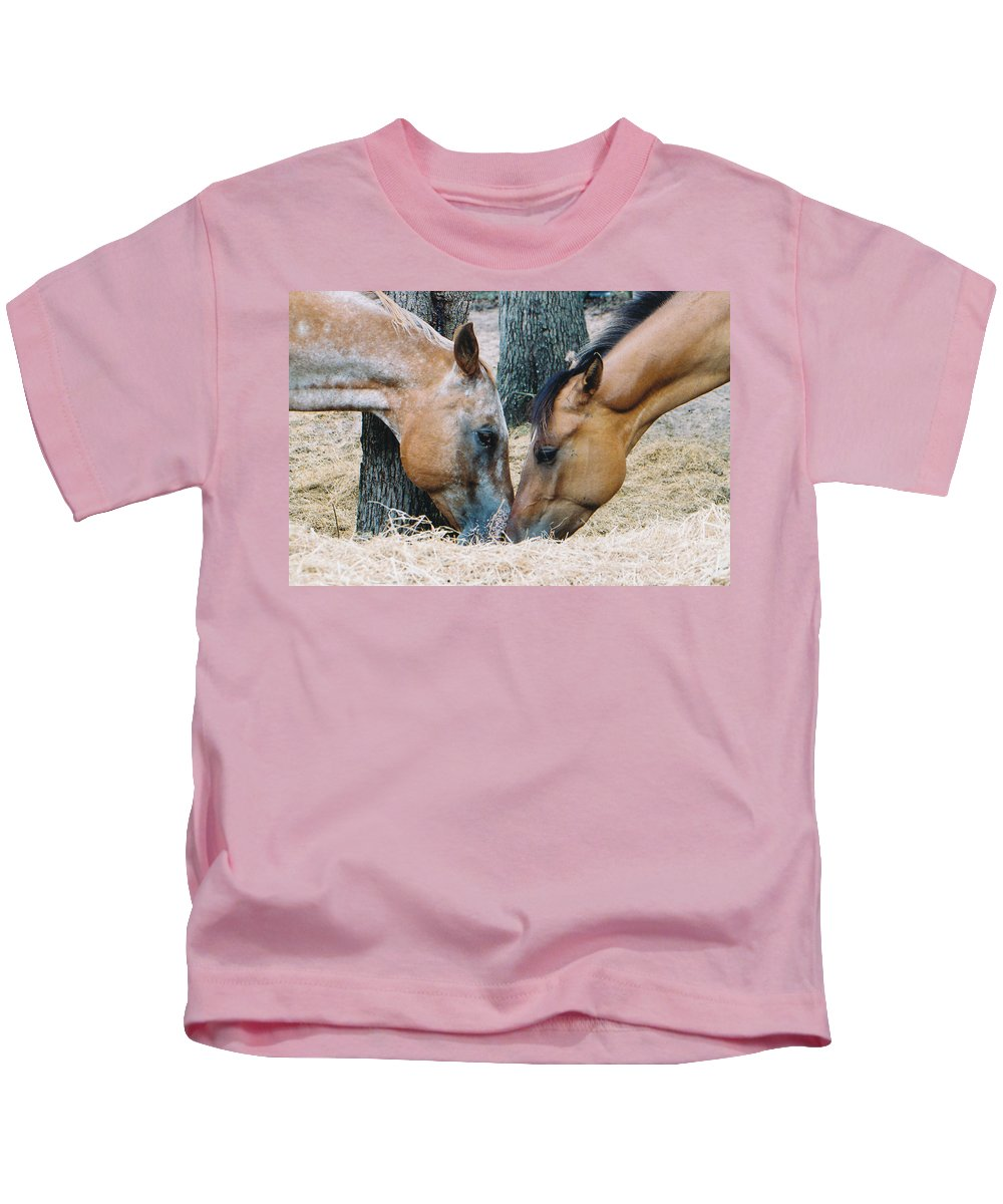 Horses Tree Hay Buckskin Appaloosa Kiss Kids T-Shirt featuring the photograph A Little Kiss by Cindy New