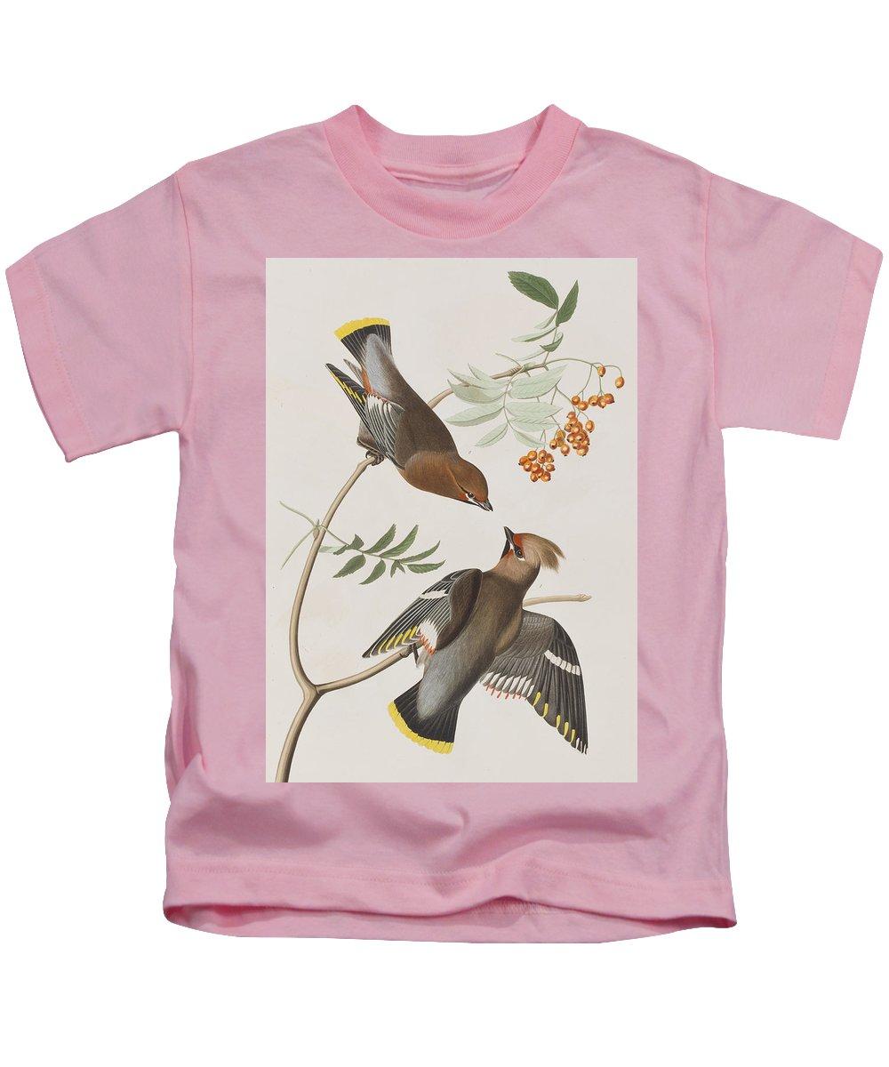 Bohemian Chatterer Kids T-Shirt featuring the painting Bohemian Chatterer by John James Audubon