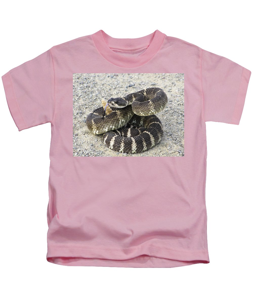 Rattlesnake Kids T-Shirt featuring the photograph Don't Step On Me by Karen W Meyer