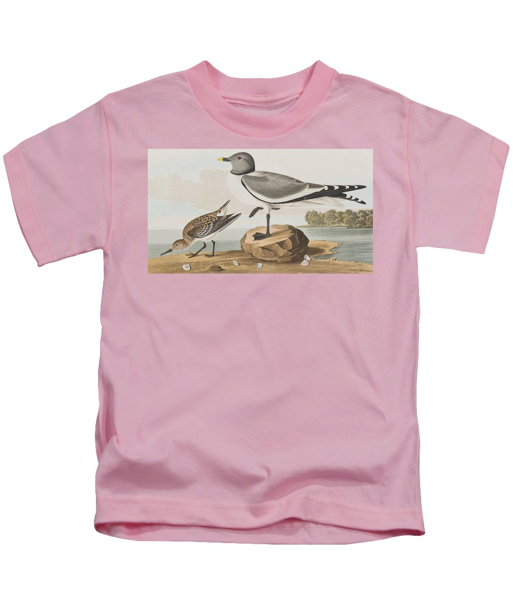 Gull Kids T-Shirt featuring the painting Fork-tailed Gull by John James Audubon