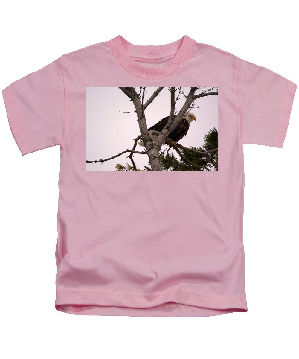 American Bald Eagle Kids T-Shirt featuring the photograph In A Pine by Linda Kerkau