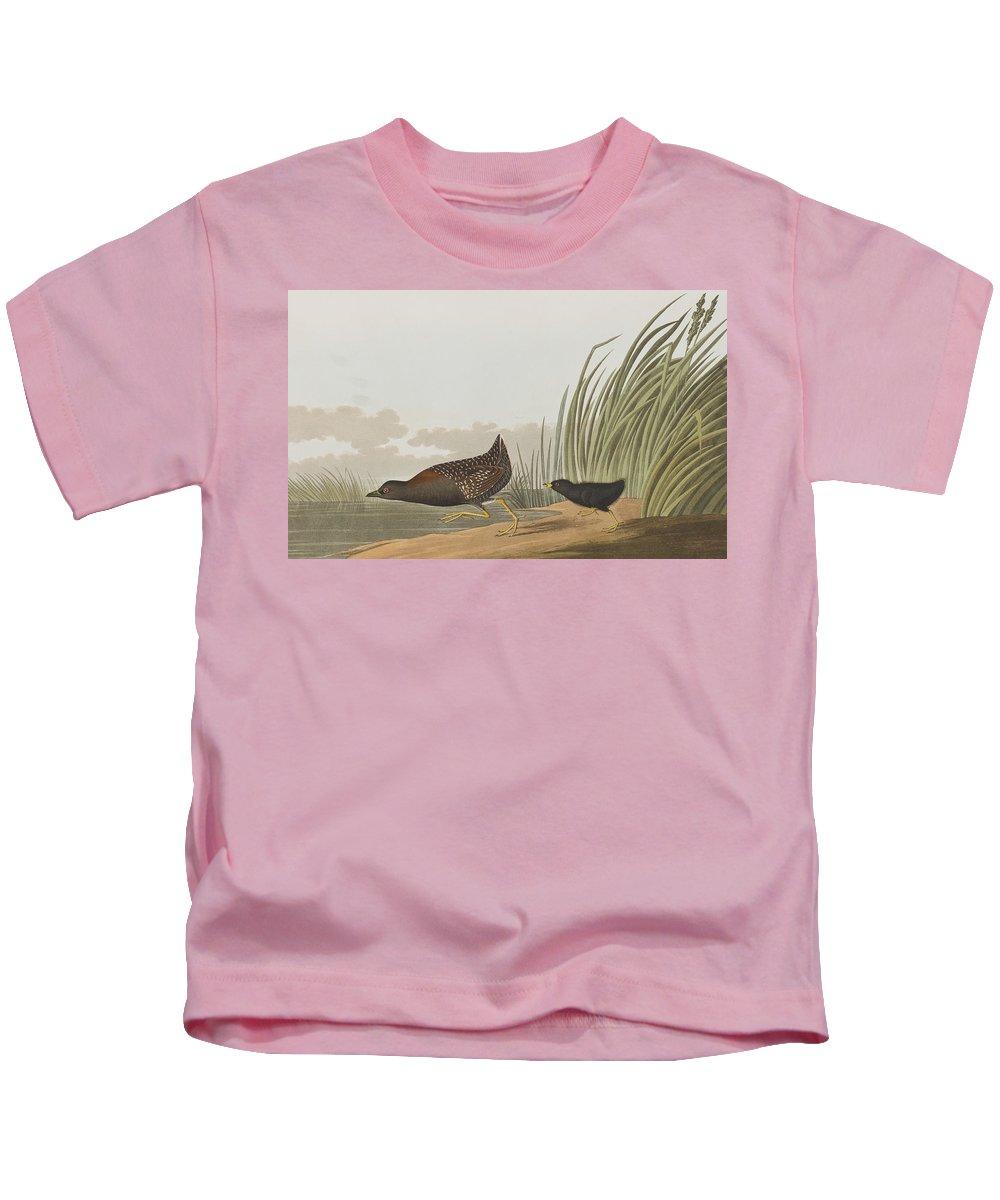 Least Water Hen Kids T-Shirt featuring the painting Least Water Hen by John James Audubon
